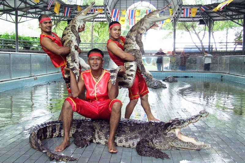 Performers with crocodiles at Million Years Stone Park in Pattaya, Thailand